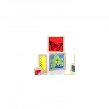 Игровой набор Guidecraft Набор блоков Natural Play Сокровища в ящиках разно Фото 3